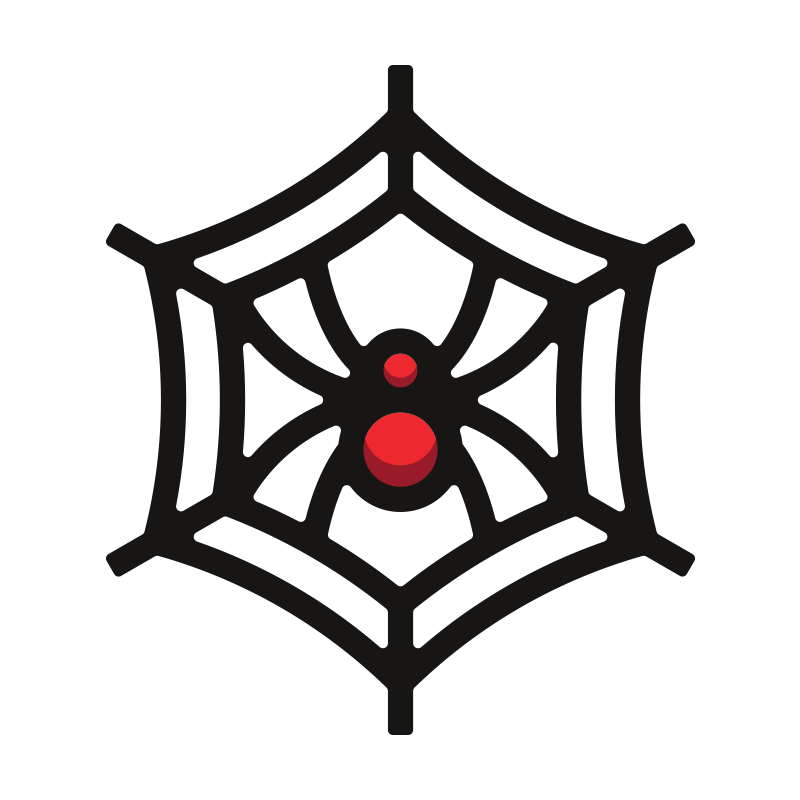 OpenStack Troubleshooting - A Quick Study Guide for the COA Exam: Neutron Spider Web