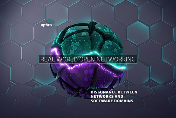 Real-World Open Networking. Part 5: Dissonance between Networks and Software Domains