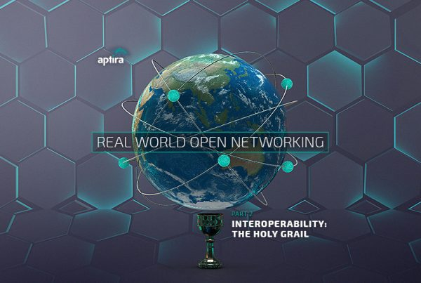 Real-world Open Networking. Part 2 – Interoperability: The Holy Grail